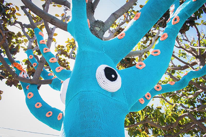 squid-4
