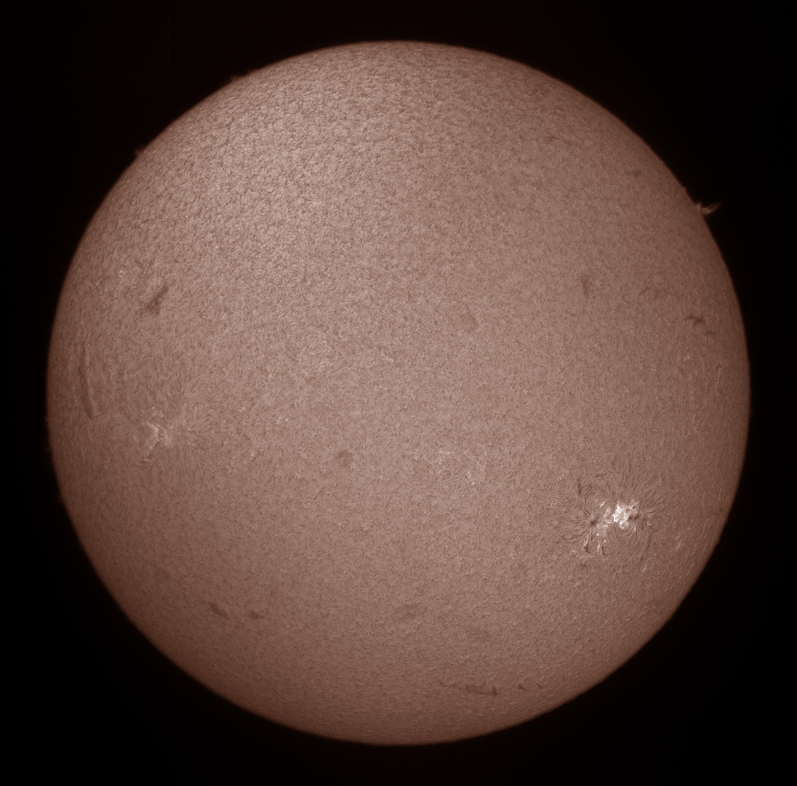 SunHa24-large
