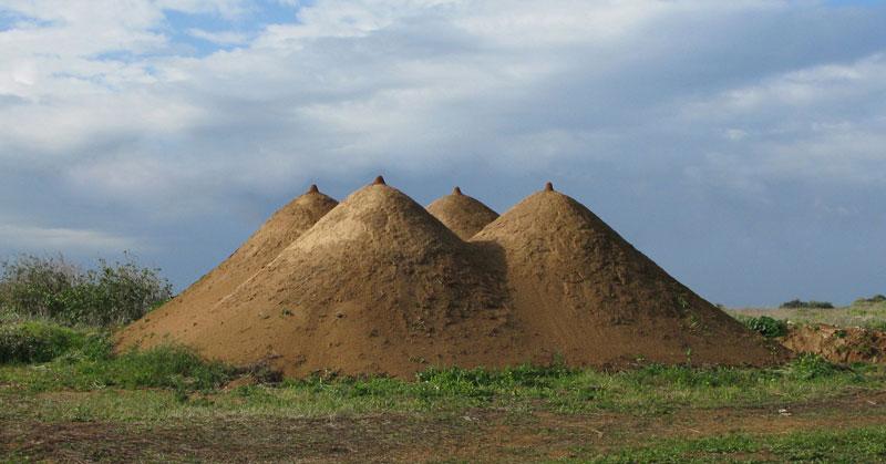 tanya-piramid