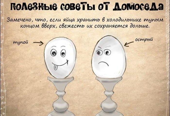 advice_05
