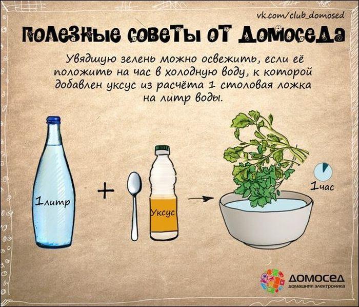 advice_09