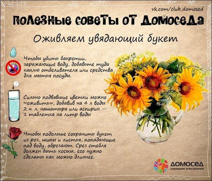 advice_19