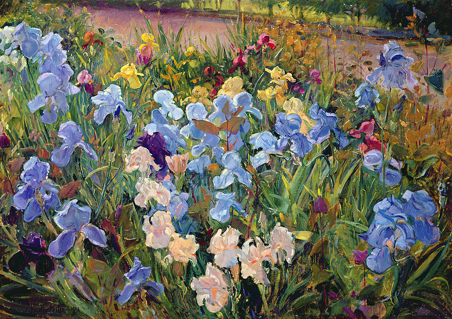 the-iris-bed-timothy-easton