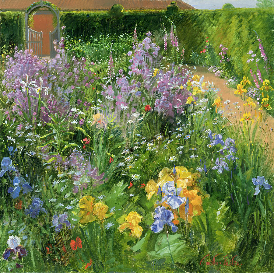 sweet-rocket--foxgloves-and-irises-timothy-easton