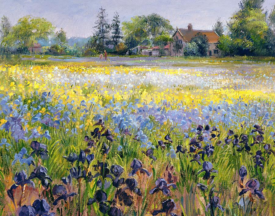irises-and-two-fir-trees-timothy-easton-