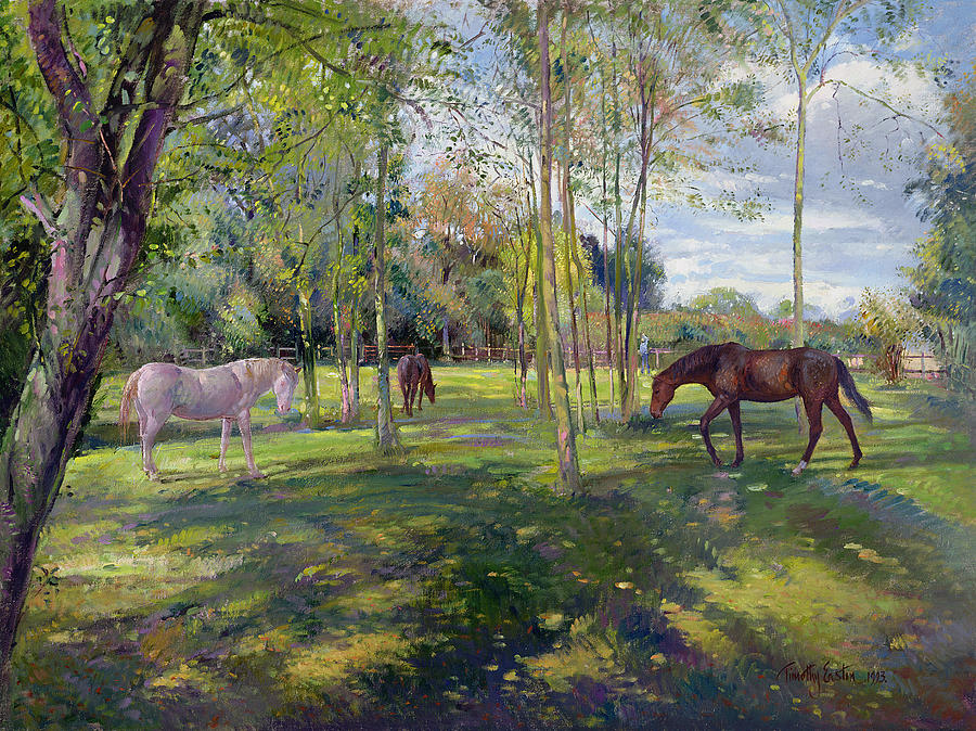 in-the-rectory-paddock-timothy-easton