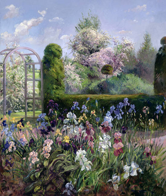 Irises-in-the-Formal-Gardens-by-Timothy-Easton