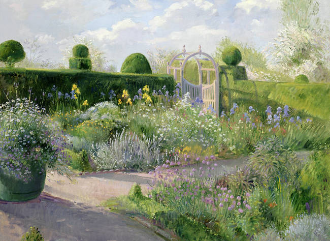 Irises-in-the-Herb-Garden-by-Timothy-Easton