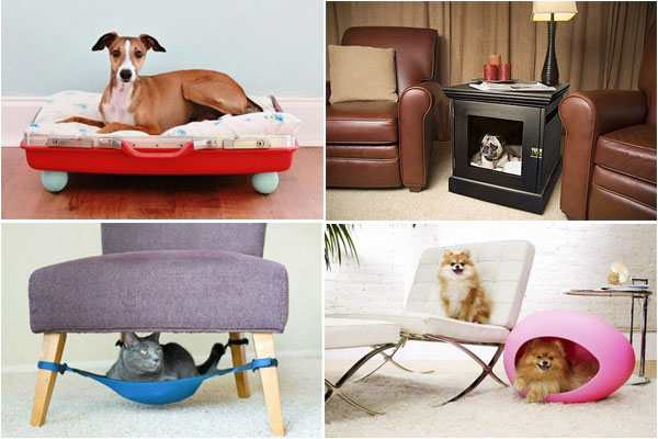 Cool-Furniture-Pets