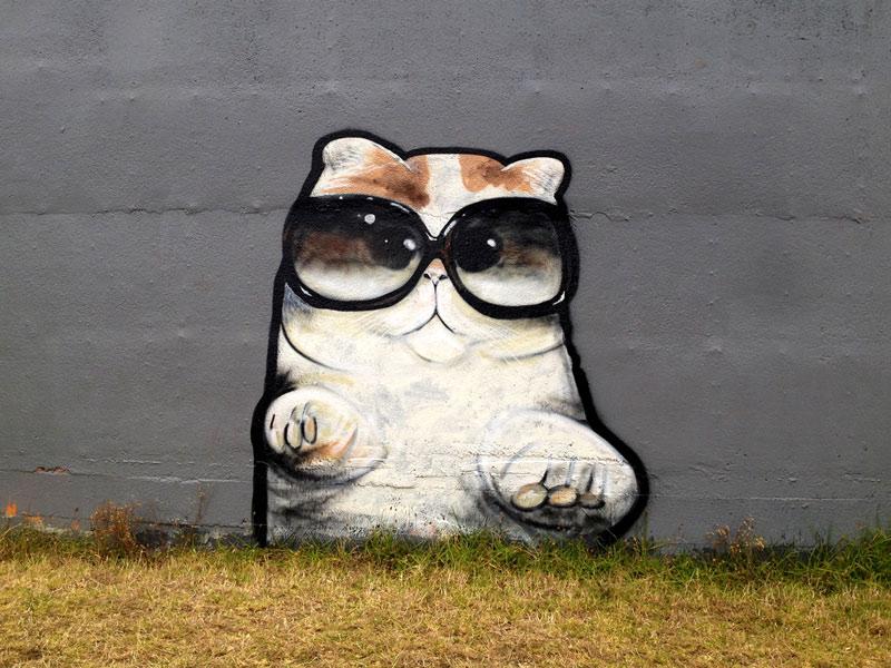 fabulous-cat