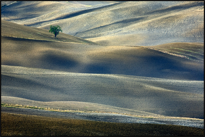 40944510_1236934195_Tuscany_17_by_lonelywolf2