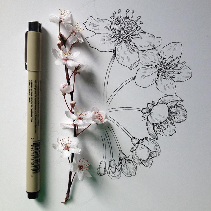 flowers-6.jpg