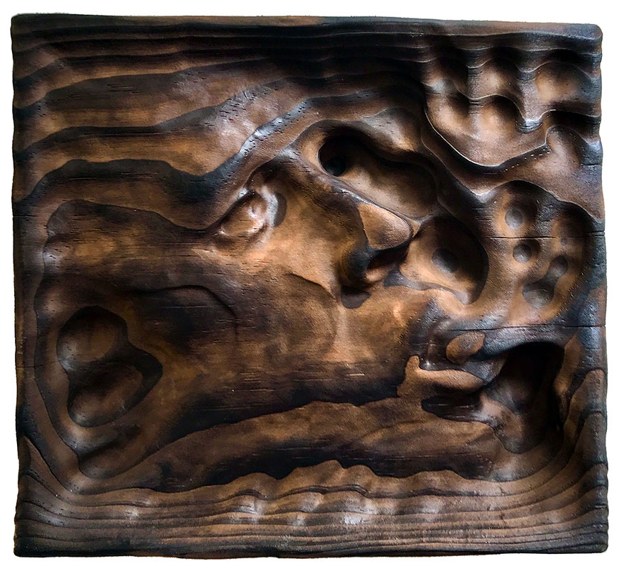 Ayahuasca-visions-showed-artist-an-ancient-woodworking-technique-that-he-is-now-using-to-produce-unique-wood-sculptures-596340dca63cd__880.jpg