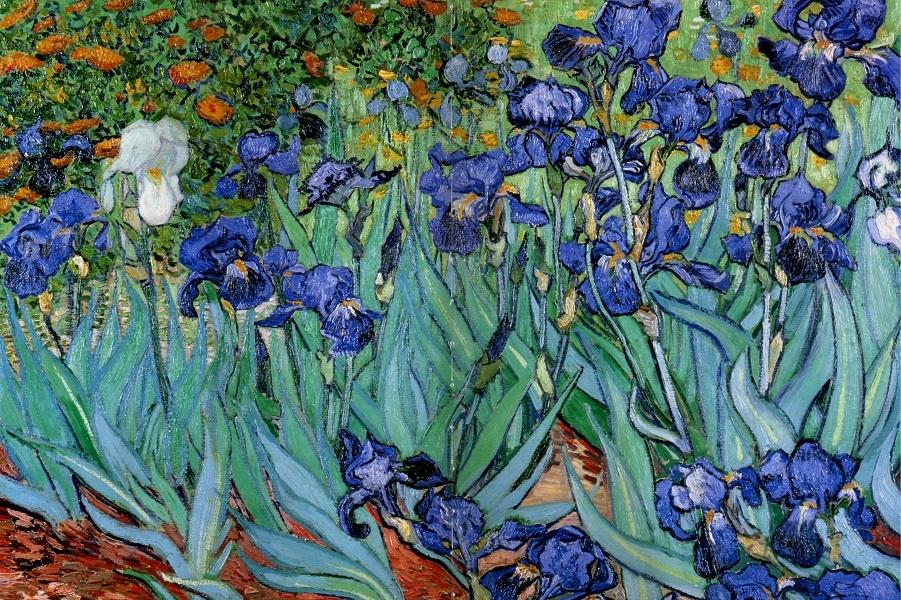 1352765872-1889-van-gogh-les-iris-iriseshuile-sur-toile-71x83-cm (1).jpg