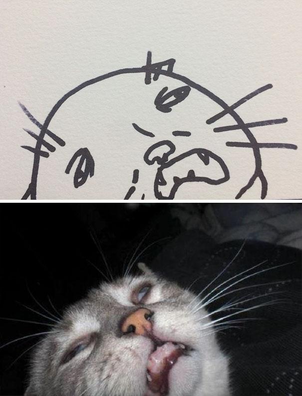 funny-poorly-drawn-cats-3-59705e6a419cb__605.jpg