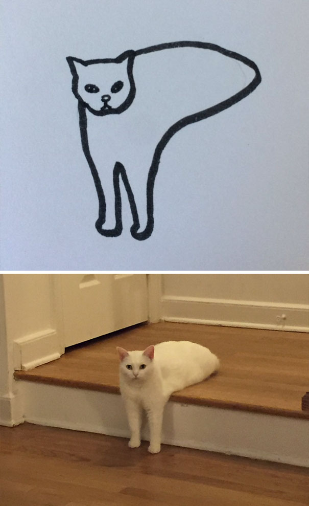 funny-poorly-drawn-cats-11-59705e7971cae__605.jpg