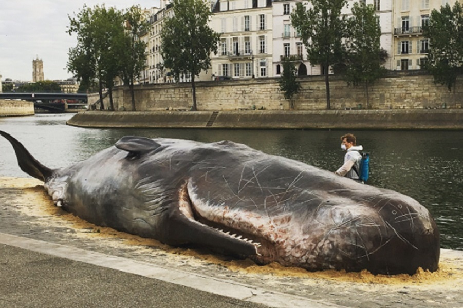 captain-boomer-collective-whale-paris-installation-designboom-001 (1).jpg