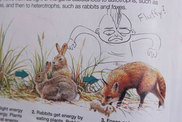 funny-textbook-drawings-200-599aa70174793__605.jpg