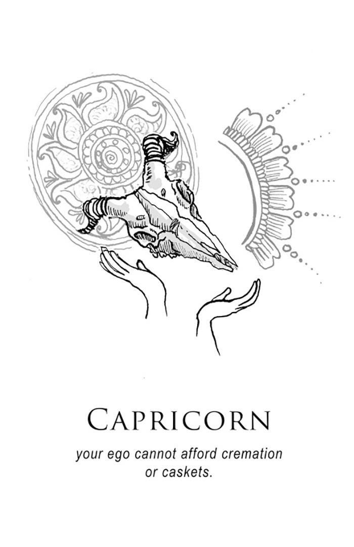 Shitty-Horoscopes-Zodiac-Anthology-Amrit-Brar-4-59b68e049c006__700.jpg