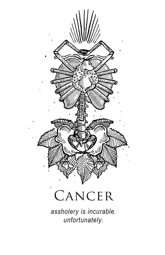 shitty-horoscopes-zodiac-anthology-amrit-brar-12-59b68dfbf2770__700.jpg
