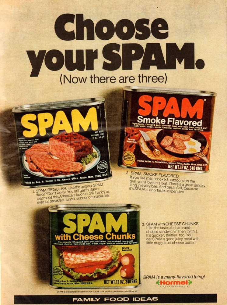 spam-advertisement-768x1029.jpg
