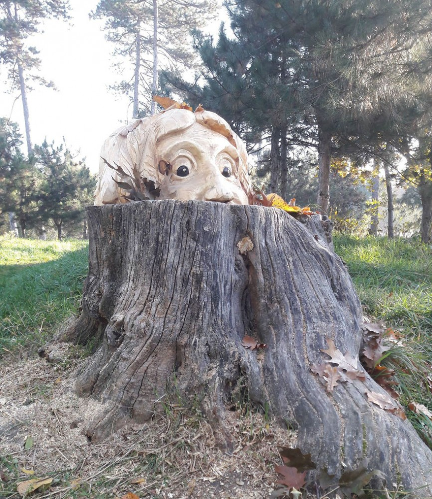 Artist-makes-art-on-tree-stumps-leaving-parks-and-public-places-more-beautiful-59e7157bba38b__880.jpg
