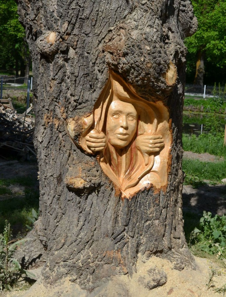 Artist-makes-art-on-tree-stumps-leaving-parks-and-public-places-more-beautiful-59e7159c5a0f0__880.jpg