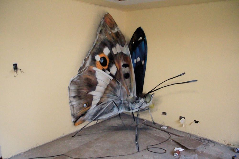 butterfly-6-960x640@2x.jpg