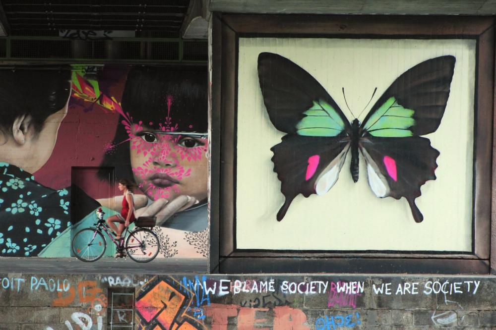 butterfly-7-960x640@2x.jpg