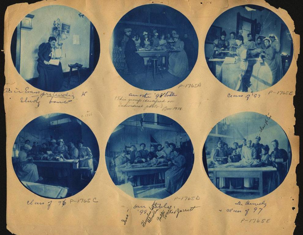 Вырезки Элиса Эвана с изображениями рассечения, c. 1898..jpg