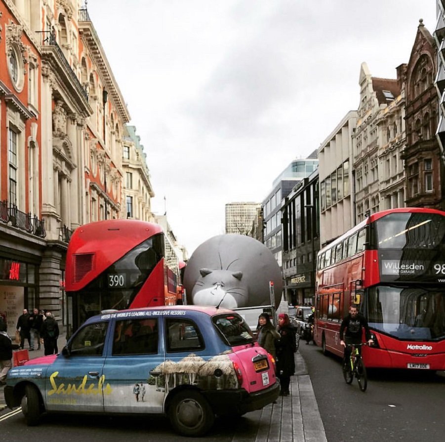 Five-huge-inflatable-cats-round-London-5a6a2886dddac__880.jpg