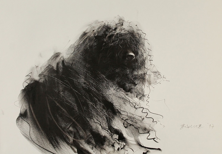 dog-drawings-endre-penovac-7.jpg