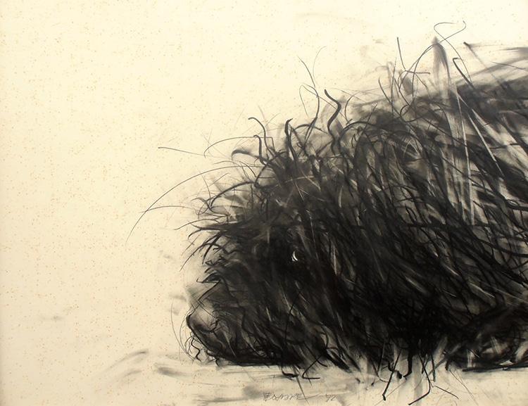 dog-drawings-endre-penovac-12.jpg