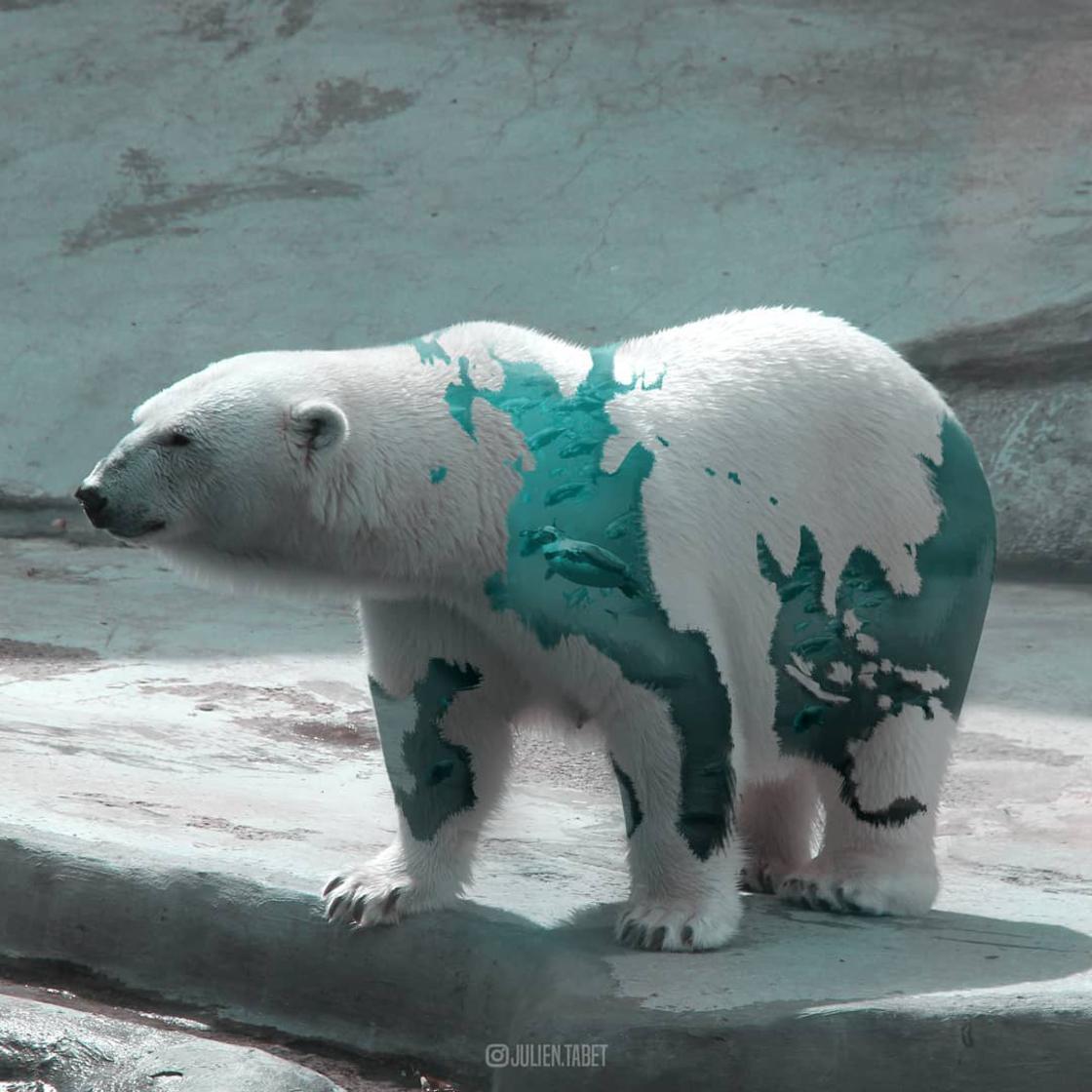 animaux-fantastiques-julien-tabet-10.jpg