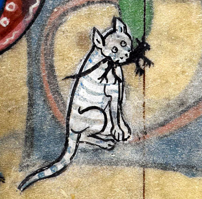 ugly-medieval-cats-art-110-5aafb5552848f__700.jpg