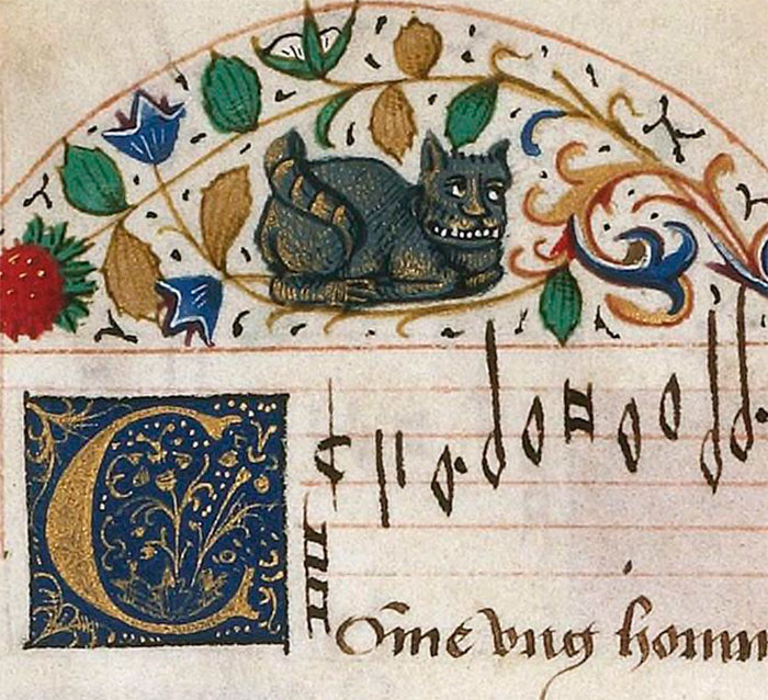 ugly-medieval-cats-art-127-5aafcdfbed205__700.jpg