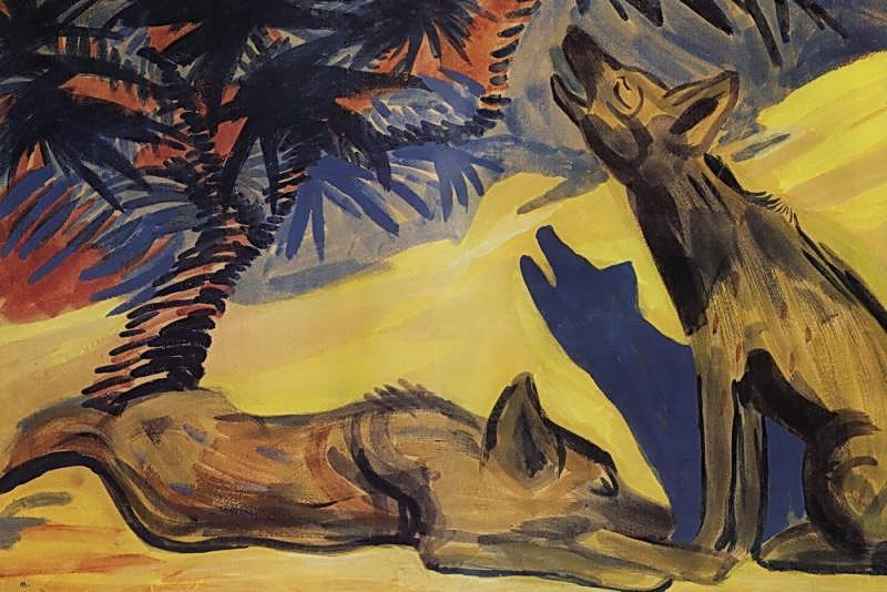 hyenas-1909.jpg