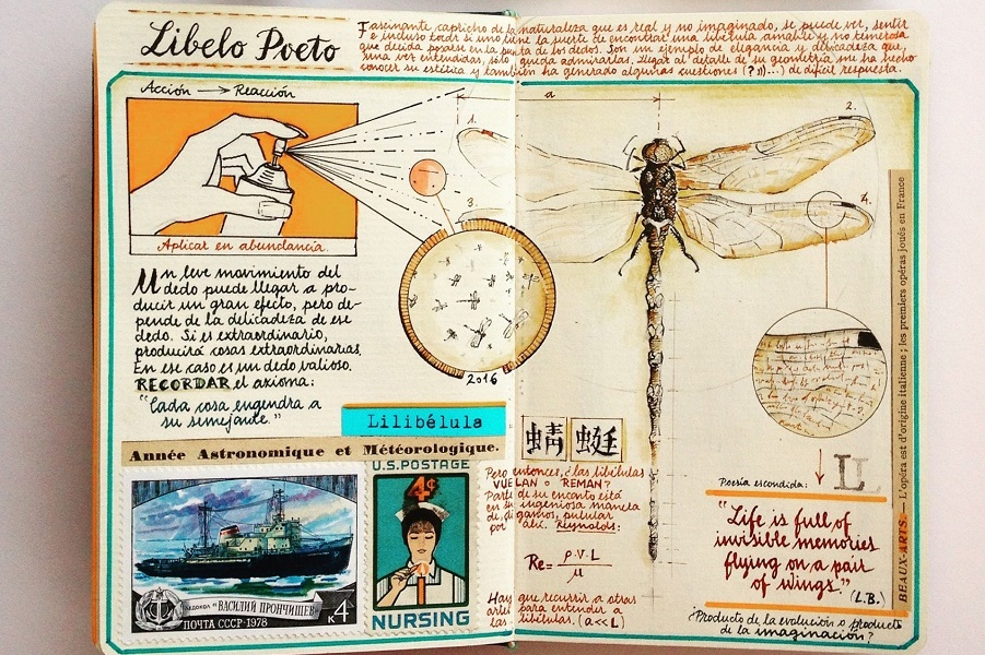 Грибочки, матрешки и карты - отчеты о путешествиях