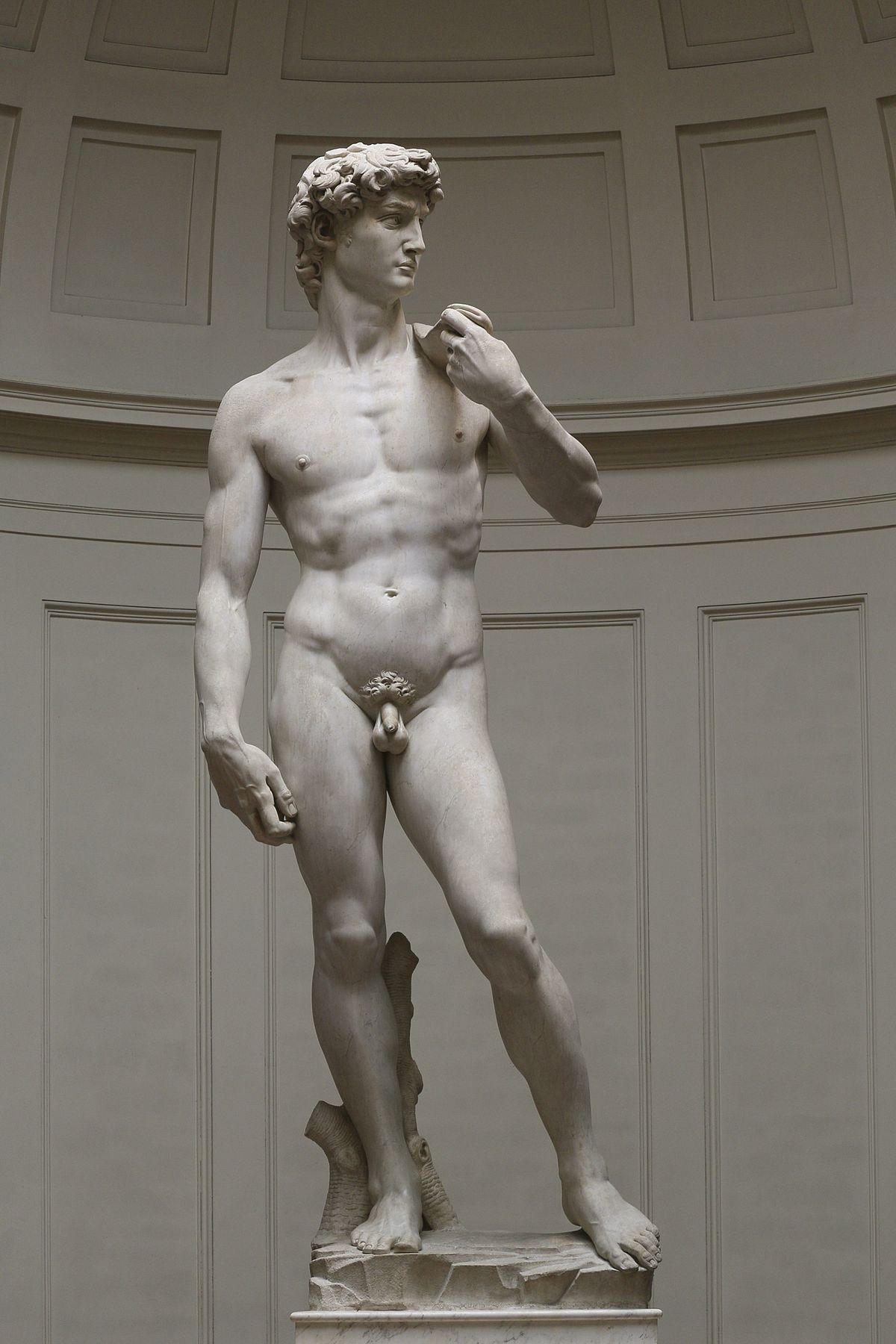 'David'_by_Michelangelo_Fir_JBU002.jpg