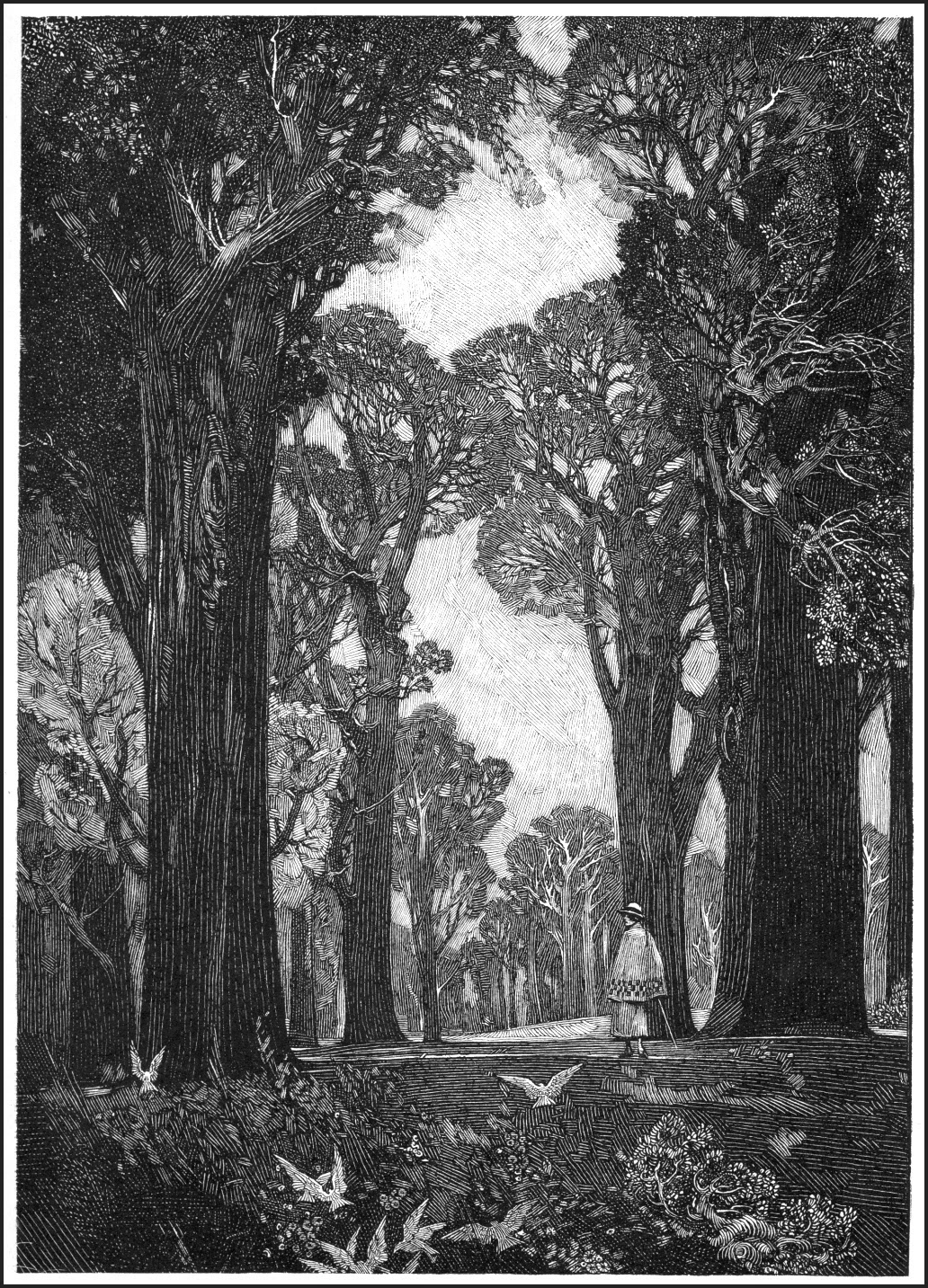 franklin_booth_graphicine_32FranklinBooth-TheWoodland-full.jpg