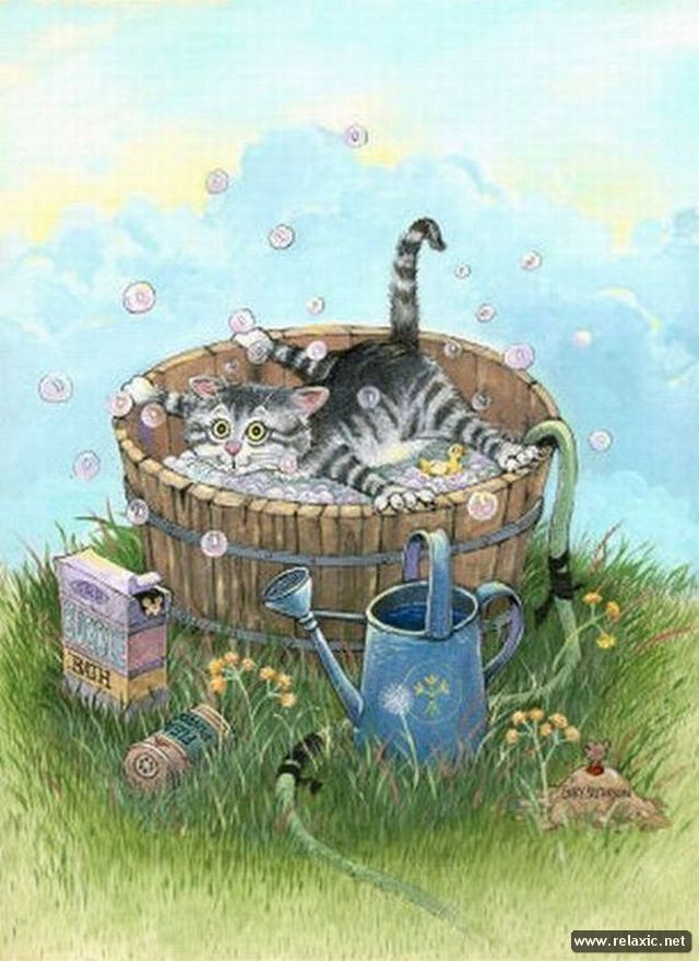 truth-about-cats_002