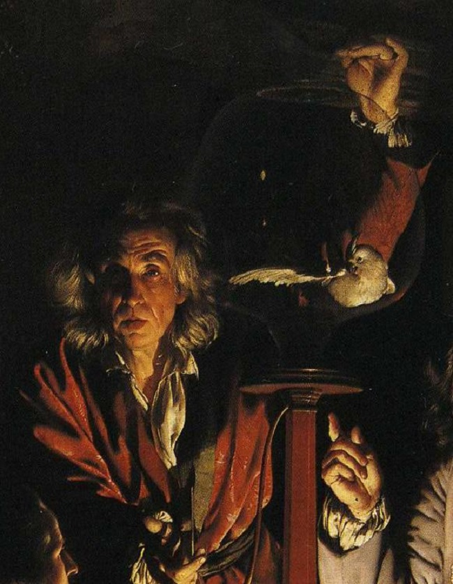 Joseph_Wright_of_Derby._An_Experiment_on_a_Bird_in_the_Air_Pump._Detail.Bird.jpg