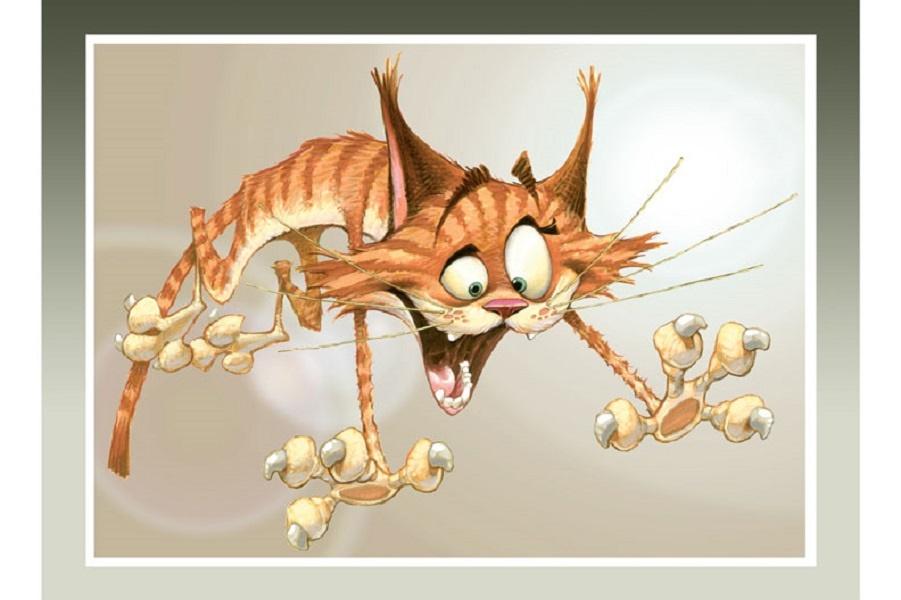 catattack.jpg