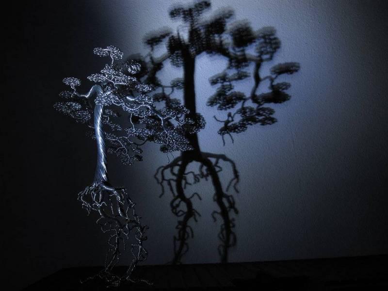kai-trees_18