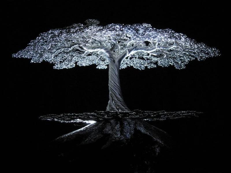 kai-trees_03