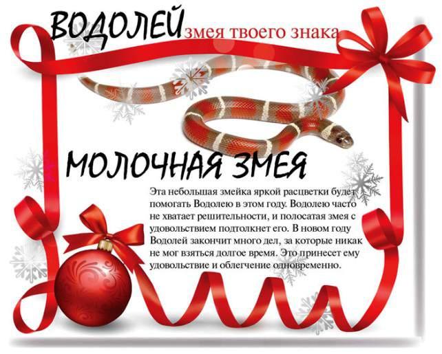 zmeya_0008