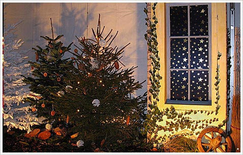 229-elzas-christmas-5