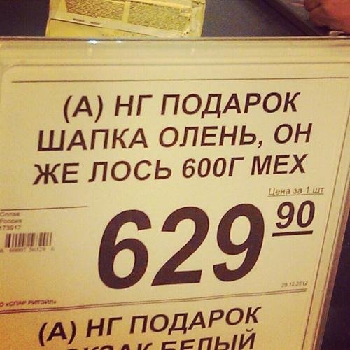 5955805-R3L8T8D-500-olen_los