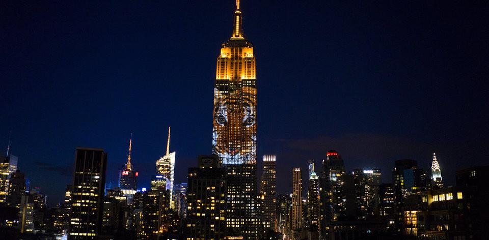 APTOPIX Empire State Building Endangered Species