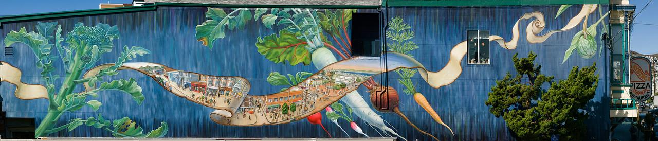 Noe Valley 24th Street Mural by Mona Caron